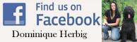 Find Us On FaceBook - Image